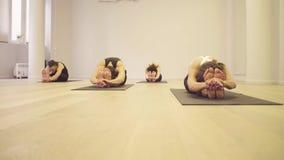 Joga klasa Ludzie robi joga ćwiczeniom zdjęcie wideo