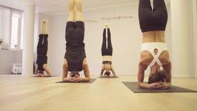 Joga klasa Ludzie robi joga ćwiczeniom zbiory