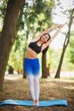 Joga outdoors - sporty dysponowana kobieta robi joga w jesień lesie tła plamy kwiat spojrzenie lubi spojrzenia s Zdjęcie Stock
