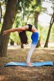 Joga outdoors - sporty dysponowana kobieta robi joga w jesień lesie tła plamy kwiat spojrzenie lubi spojrzenia s Obraz Royalty Free