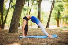 Joga outdoors - sporty dysponowana kobieta robi joga w jesień lesie tła plamy kwiat spojrzenie lubi spojrzenia s Obraz Stock