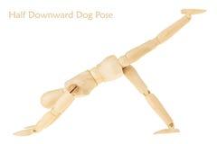 Joga przyrodnia zmniejszający się psia poza Zdjęcie Stock