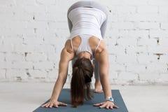 Joga trening indoors Obrazy Royalty Free