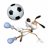 Jogador de futebol Amusing do cão. Fotos de Stock