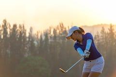 Jogador de golfe asiático da mulher que faz o T do balanço do golfe fora no tempo verde da noite do por do sol, foto de stock