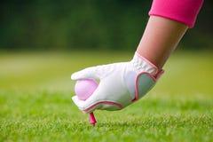 Jogador de golfe da senhora que coloca a bola e o T cor-de-rosa na terra Fotos de Stock