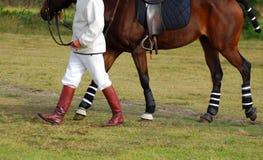 Jogador de Polocrosse com cavalo imagem de stock royalty free