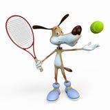 Jogador de ténis do cão. Imagens de Stock