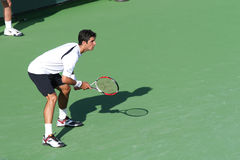 Jogador de ténis profissional. Foto de Stock