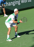 Jogador de ténis profissional. Imagens de Stock Royalty Free
