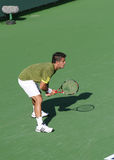 Jogador de ténis profissional. Fotografia de Stock Royalty Free
