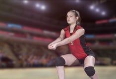 Jogador de voleibol profissional fêmea na corte de voleibol fotos de stock royalty free