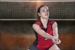 Jogador de voleibol profissional fêmea na corte de voleibol fotos de stock