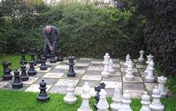 Jogador de xadrez Fotografia de Stock