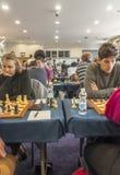 Jogador de xadrez Fotos de Stock Royalty Free