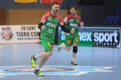 Jogador do handball que comemora um objetivo Fotos de Stock