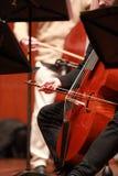 Jogador do violoncelo Compositor, música Retrato do violoncelista que joga a música clássica no violoncelo no fundo preto Copyspa fotografia de stock