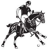 Jogador equestre do polo em um cavalo preto do pônei Fotografia de Stock Royalty Free