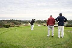 Jogadores de golfe Fotografia de Stock