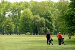 Jogadores de golfe imagens de stock royalty free