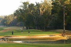 Jogadores de golfe no verde Fotografia de Stock