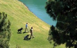 Jogadores de golfe que andam a suas esferas em um lago. imagem de stock royalty free