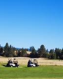 Jogadores de golfe que procuram a esfera Fotografia de Stock Royalty Free