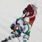 Jogadores de hóquei do gelo Foto de Stock Royalty Free
