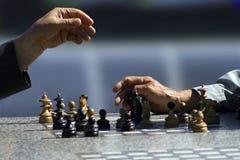 Jogadores de xadrez Fotos de Stock