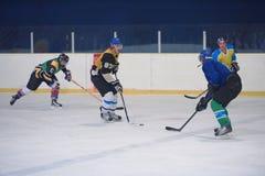Jogadores do esporte do hóquei em gelo Fotos de Stock