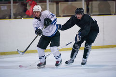Jogadores do esporte do hóquei em gelo Fotos de Stock Royalty Free
