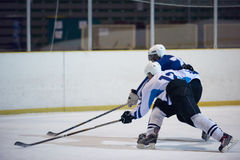 Jogadores do esporte do hóquei em gelo Imagens de Stock