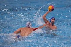 Jogadores do polo aquático Imagem de Stock