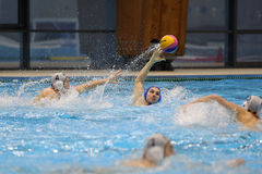 Jogadores do polo aquático que lutam pela bola Foto de Stock