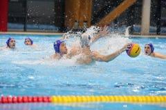 Jogadores do polo aquático que lutam pela bola Fotos de Stock