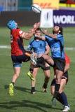 Jogadores do rugby que lutam pela bola Foto de Stock
