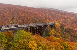 Jogakura-Brücke mit schöner Herbstfarbjahreszeit Lizenzfreie Stockbilder