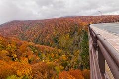 Jogakura-Brücke mit schöner Herbstfarbjahreszeit Lizenzfreies Stockfoto