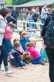 Jogando crianças Imagem de Stock Royalty Free