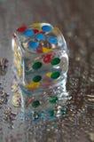Jogando dados na resina transparente e em números coloridos Fotos de Stock Royalty Free