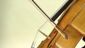 Jogando o fim do violoncelo acima Fundo branco vídeos de arquivo