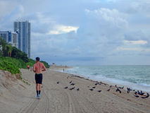 jogga längs varje på en molnig morgon Royaltyfri Foto
