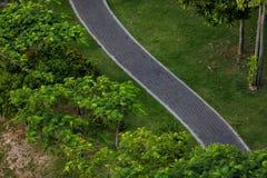Jogga slingan i parkera Royaltyfria Bilder