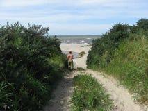 Jogga till havet Arkivbilder