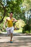 Jogger в парке Стоковое Изображение RF