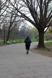 Jogger. A jogger jogging in the park royalty free stock photography