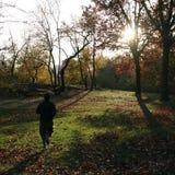 jogger Fotografering för Bildbyråer