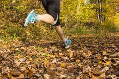 Jogger in autumn Royalty Free Stock Photography