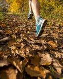 Jogger in autumn. River Großer Regen in Bavaria in autumn royalty free stock image