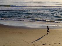 Jogger on Beach at Sunrise Stock Images